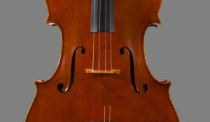 Cello 2013